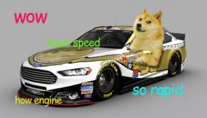 doge image
